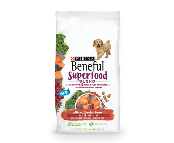 Purina Beneful Superfood Blend with Natural Salmon Adult Dry Dog Food