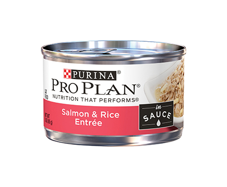 Purina Pro Plan Savor Adult Salmon & Rice Entree in Sauce Canned Cat Food