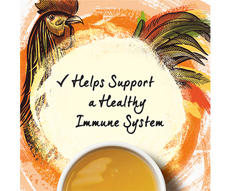 Beyond Chicken Bone Broth with Immune Support for Cats Wet Food Complement