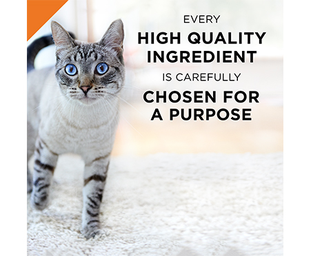 Purina® Pro Plan® Adult Whitefish & Tuna Entrée Classic