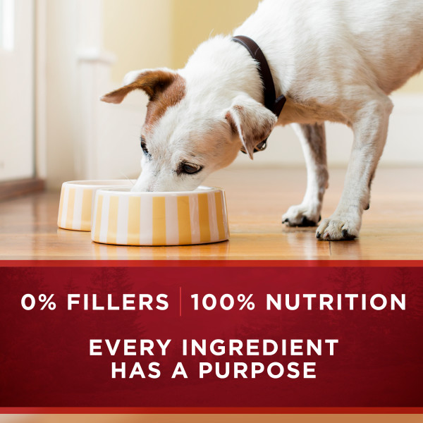 Purina ONE® SmartBlend® True Instinct Classic Ground Grain-Free Dog Food Formula With Real Game Bird