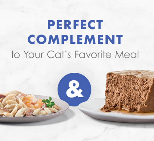 Fancy Feast® Appetizers