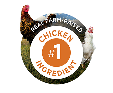 Purina® ONE True Instinct Bites With Farm-Raised Chicken Dog Treat