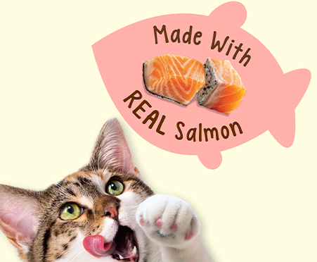 Purina® Friskies® Party Mix Natural Yums With Real Salmon Cat Treats