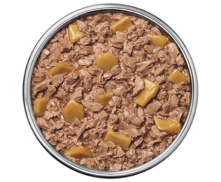 Purina Pro Plan Savory Meals Grilled Beef & Salmon Entree With Real Sweet Potatoes Wet Dog Food