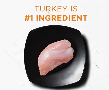 Purina Pro Plan Adult Shredded Blend Turkey, Duck, & Quail Formula Grain-Free Dry Dog Food