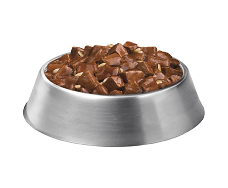Purina Pro Plan Focus Adult Large Breed Beef & Rice Entree Chunks in Gravy Canned Dog Food