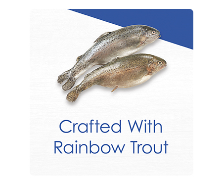 Fancy Feast® Gourmet Naturals with Rainbow Trout