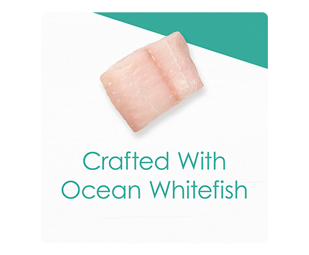 Fancy Feast® Gourmet Naturals with Ocean Whitefish