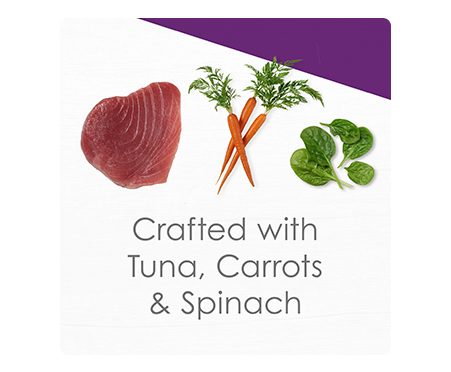 Fancy Feast® Broths Senior with Skipjack Tuna and Vegetables in a Silky Broth