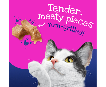Friskies® Stuf'D + Sauc'D Jump'n with Turkey + Dripp'n in gravy