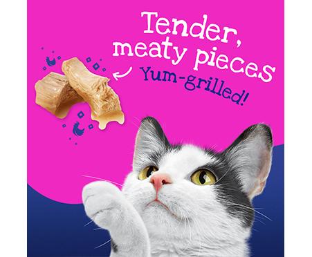 Friskies® Stuf'D + Sauc'D Wet Cat Food Variety Bundle