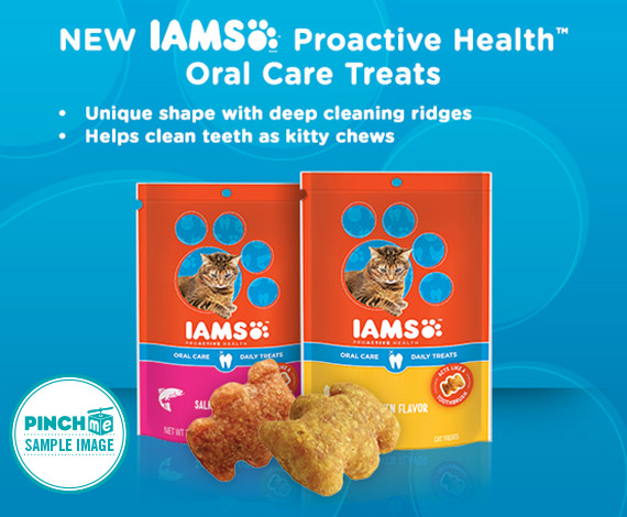 iams u2122 proactive health u2122 oral care  hairball care daily