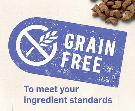 Purina Beyond Grain Free Arctic Char & Lentil Recipe Natural Dry Cat Food