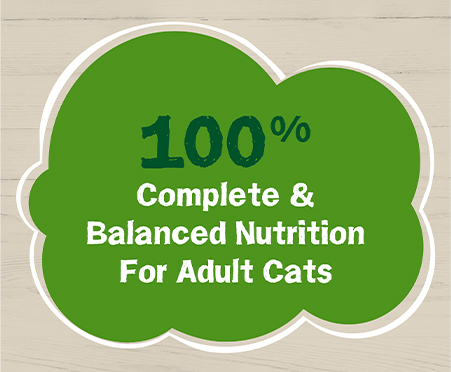 Friskies® Farm Favorites Pate With Salmon and Spinach Adult Wet Cat Food