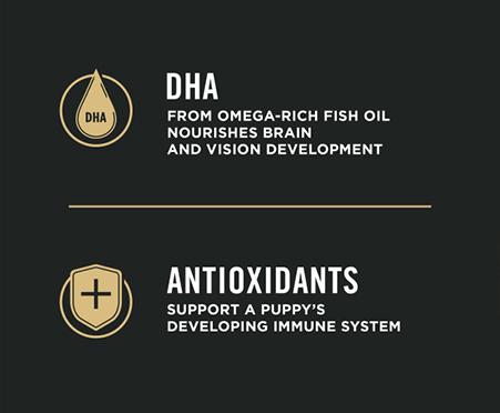 Purina® Pro Plan® Development Puppy Sensitive Skin & Stomach Salmon & Rice 4lb Formula