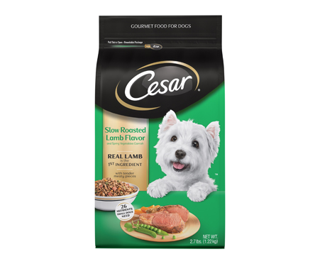 CESAR® DRY DOG FOOD
