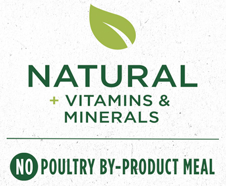 Purina ONE SmartBlend Small Breed Lamb & Rice Formula Adult Dog Food 3.8 lb. Bag