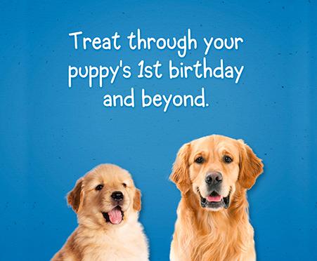 Purina® Puppy Chow Training Treats