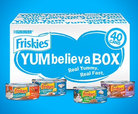 Friskies YUMbelievaBOX YUM-Stoppable Indoor Adventures Wet Cat Food 40-Count Variety Pack