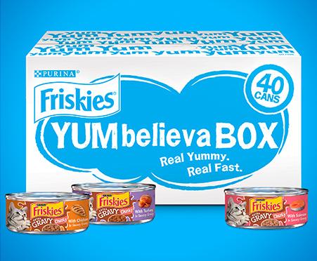 Friskies YUMbelievaBOX YUM-Mazing Gravy Wet Cat Food 40-Count Variety Pack